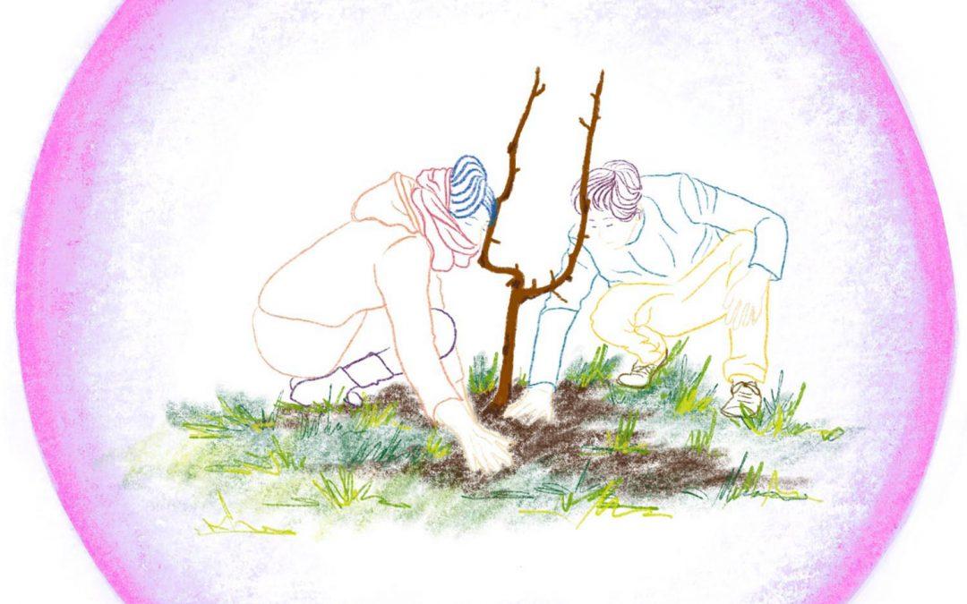 Planter des arbres #3 – La plantation du siècle à Nantes